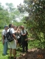 Tropical Plantation Tour CATIE